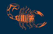Scorpion Knives